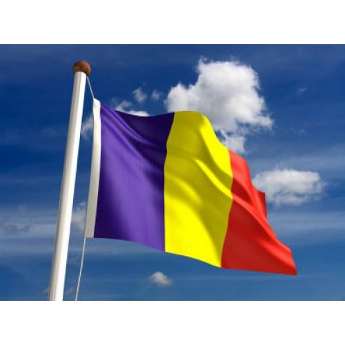 Знаме Румъния 90/150 см.