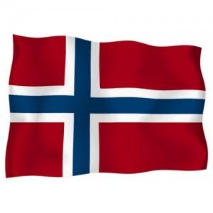 Знаме на Норвегия 14/21 см.