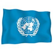 Знамена на организации (21)