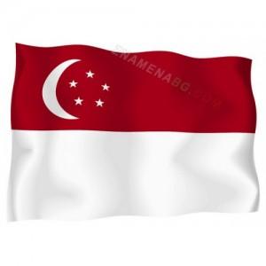 Знаме на Сингапур 90/150 см.
