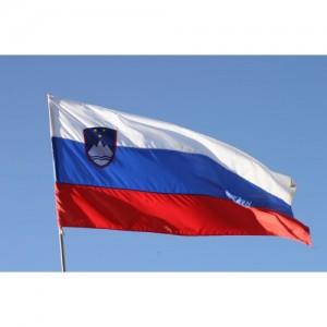 Знаме на Словения 90/150 см.