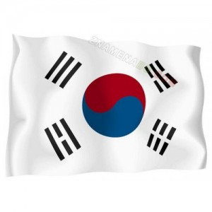 Знаме на Южна Корея  90/150 см.