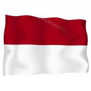 Знаме на Монако 90/150 см.