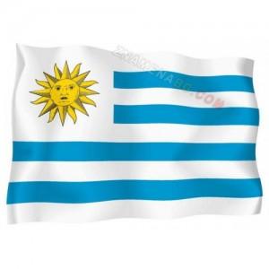 Знаме на Уругвай 90/150 см.