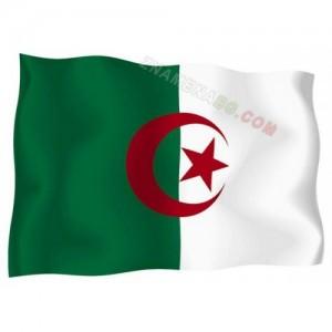 Знаме на Алжир  90/150 см.