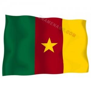 Знаме на Камерун 90/150 см.